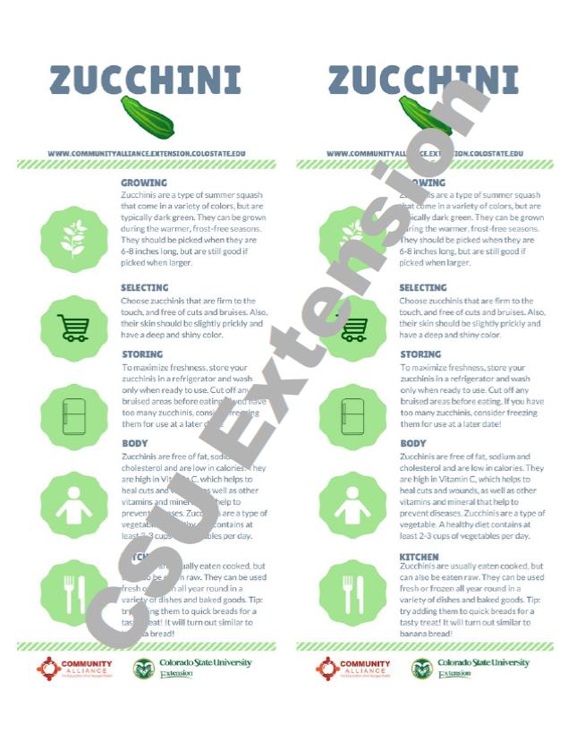 Zucchini Nutrition Card